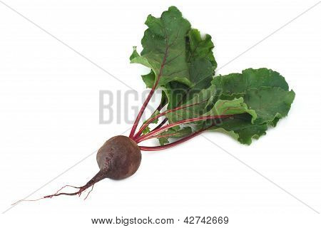 Fresh red beets with leaves