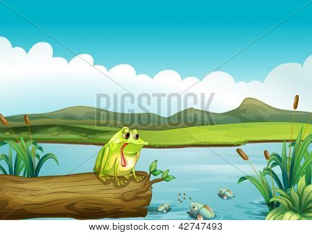 Illustration of the lonely frog