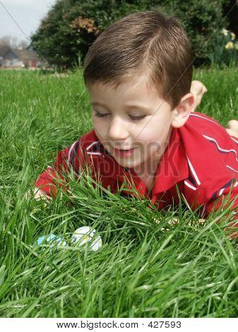 Boy Eggs 8