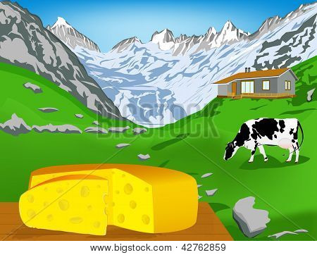 Natural swiss dairy cheese from cow with alps meadow