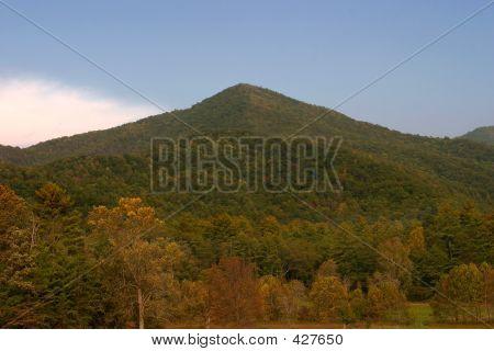 The Lush Smoky Mountains