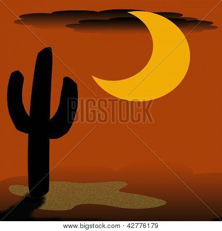 desert cactus at night