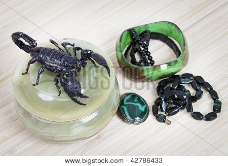 Women's Adornment With Scorpion