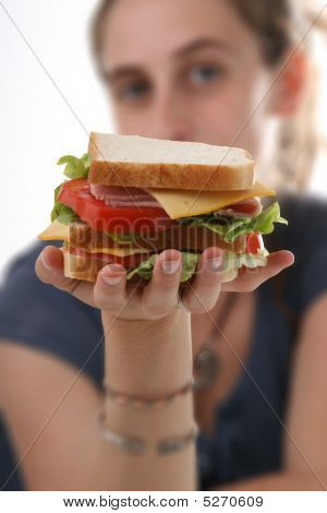 Sandwich In Hand Of Woman