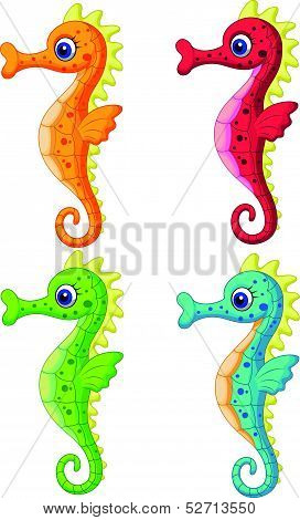 Sea horse cartoon
