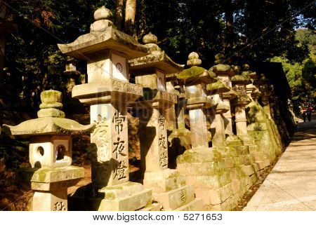 Stone Lanterns At Kasuga Shrine, Nara, Japan