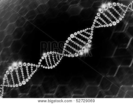 structure of the DNA molecule