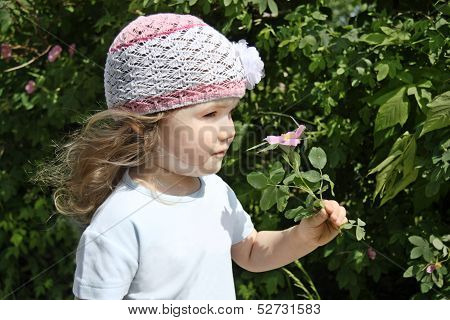 Beautiful Little Girl In White Hat Smells Pink Briar On Sunny Day.