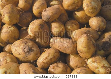 Cornish Potatoes