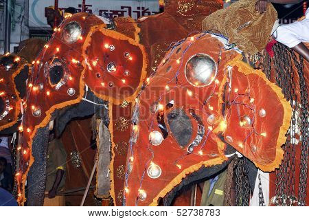 Elephants Participate The Festival Pera Hera In Candy