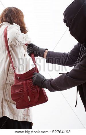 Handbag Thief