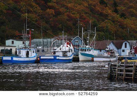 Petty Harbor Newfoundland