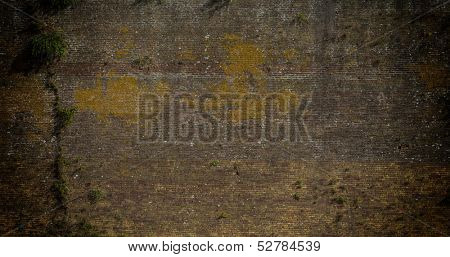 Brick wall background with weeds