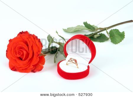 Red rose and wedding ring