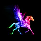 stock photo of pegasus  - Fire Pegasus in spectrum colors on black background - JPG