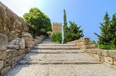 pic of crusader  - The entrance of the crusaders - JPG