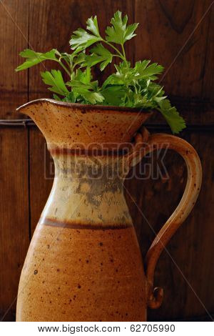 Vintage hand thrown pottery pitcher with parsley against rustic dark wood background.  Low key still life with directional natural lighting for effect.