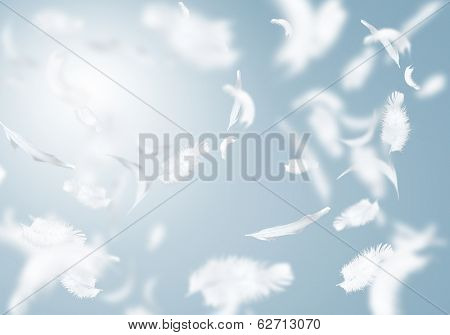 Abstract background image of white feathers flying in air