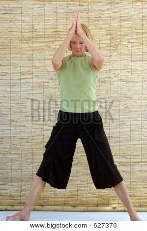 Senior Woman Vinyasa Practice