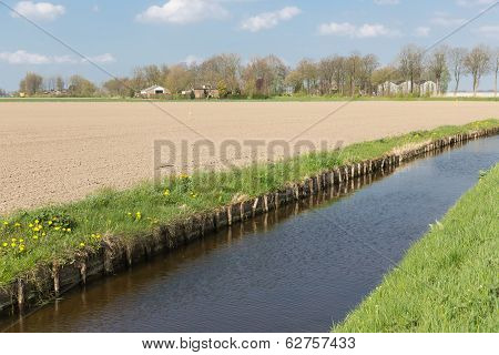 Dutch Rural Landscape With Ditch And Farmland