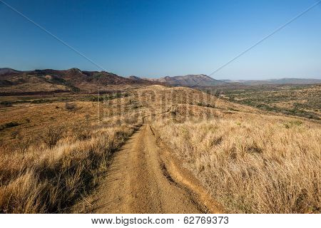 Dirt Road Rugged Wilderness