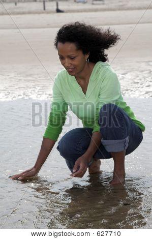 Seeking For Shells In Low Tide
