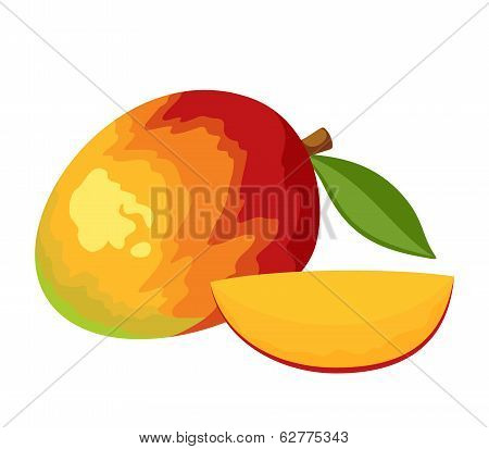 Mango. Vector illustration.