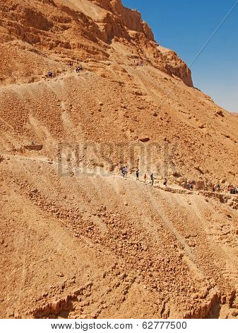 Road In Fortress Masada, Israel