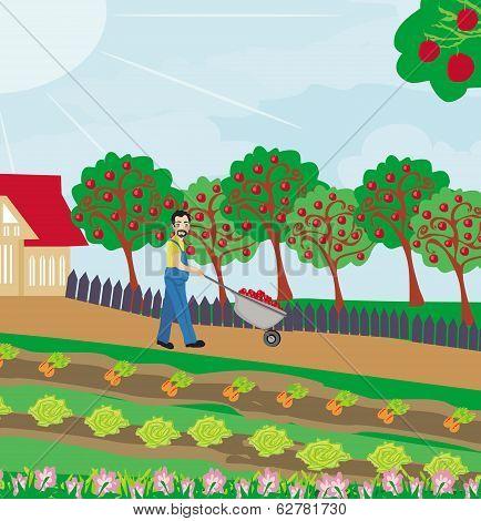 Gardener In The Orchard
