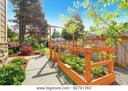 Backyard Garden Bed With Trellis