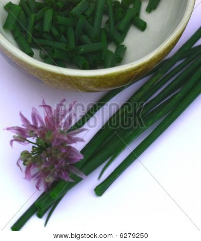 Chives - chopped, stalks, and flower