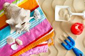 picture of memento  - Collecting seashells on a summer vacation with a large conch and assorted smaller shells on a colorful beach towel with kids plastic toys on golden beach sand - JPG