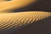 stock photo of barchan  - Sandy waves in the Sahara Desert - JPG