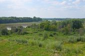 picture of siberia  - Summer Siberia nature with river and trees - JPG