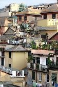 stock photo of genova  - Beautiful view of roofs of Genova - JPG
