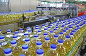 image of sunflower-seed  - Sunflower oil in the bottle moving on production line