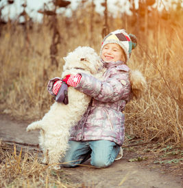 pic of westie  - little cute girl with her dog  walking in a field in autumn - JPG