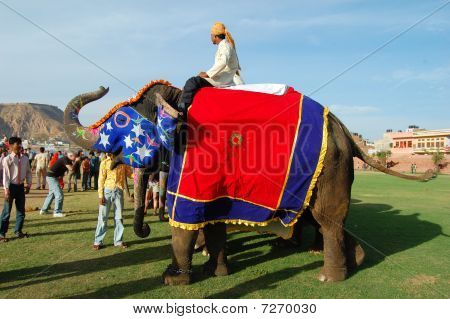 Colorful elephant with mahout