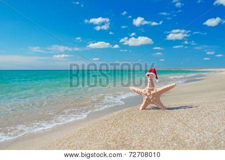 Sea-star In Santa Hat At Sea Sandy Beach. Holiday Concept For Ne
