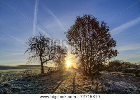 Sunrise In Winter With Hoar Frost In The Fields And Blue Sky