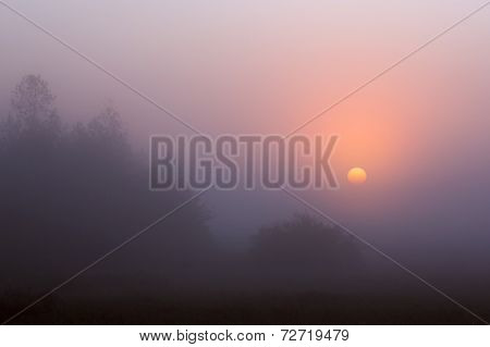 Sunrise Through The Fog
