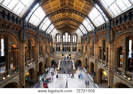 LONDON - SEPTEMBER 28: The great Central Hall of The Natural History Museum on September 28 2013 in