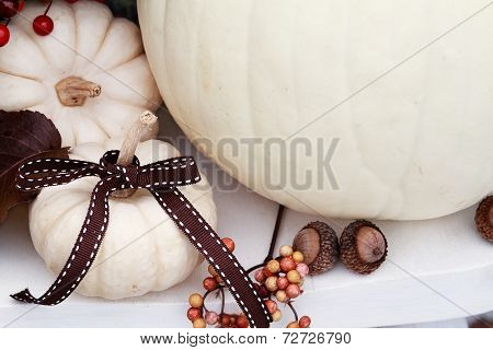 White Pumpkin With Ribbon