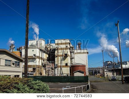 Pulp And Paper Mill,