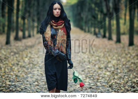 Slim Brunette Woman In A Park