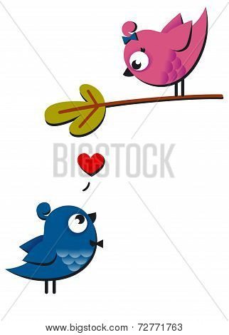 Cute pink and blue birds fall in love