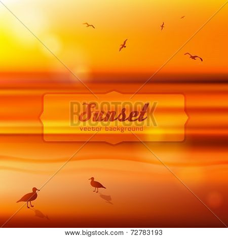 Seagulls at sunset. Background illustration.