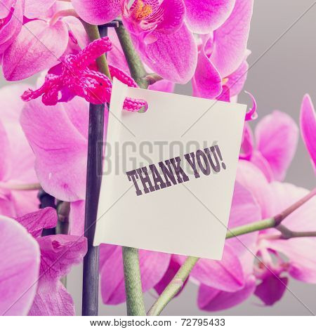Bouquet Of Orchids With A Thank You Note