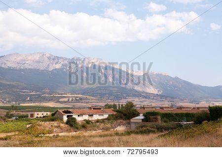Alavesa Vineyards, La Rioja, Spain