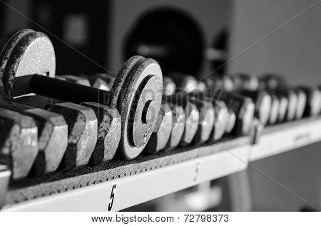 Dumbells sitting on a rack